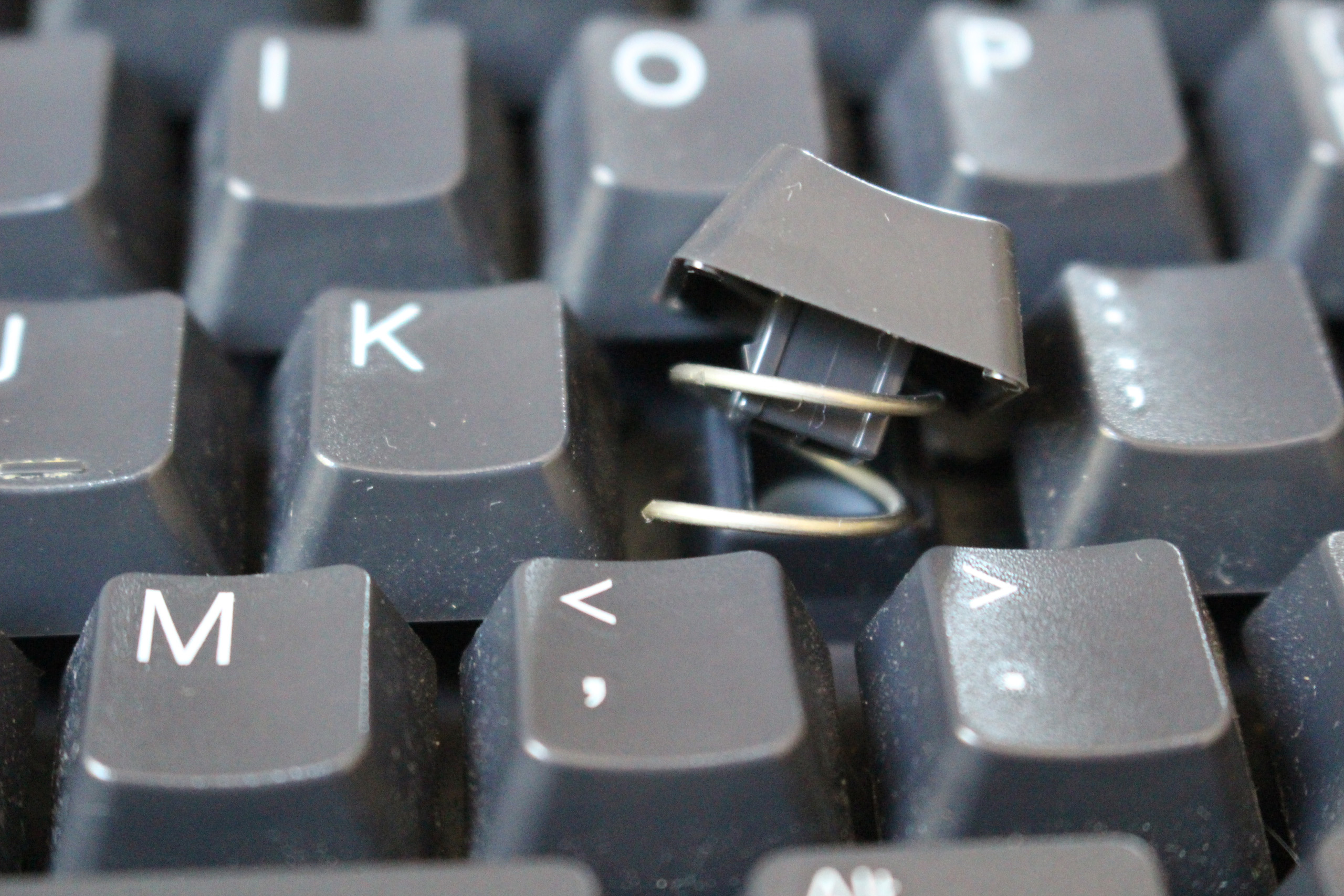 Close up of a keyboard. One key has been slightly removed to reveal a spring tucked within the key. Picture taken by Steven LeMieux
